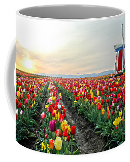 Coffee Mug featuring the photograph My Touch Of Holland 2 by Nick  Boren