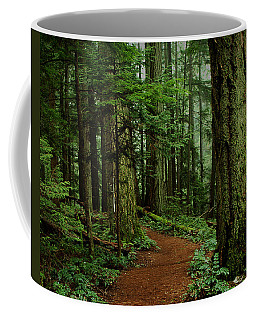 Mystical Path Coffee Mug by Randy Hall