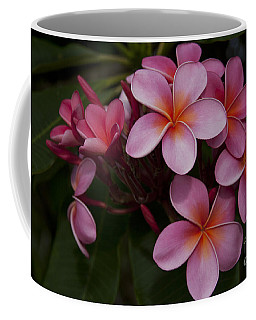 Na Lei Pua Melia O Wailua - Pink Tropical Plumeria Hawaii Coffee Mug