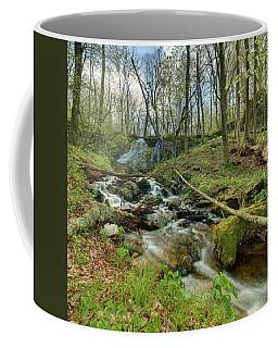 Naked Creek Falls Coffee Mug