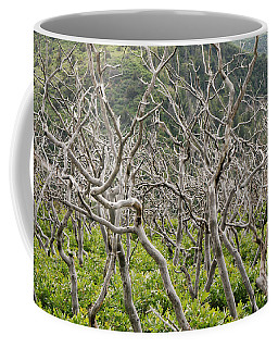 Coffee Mug featuring the photograph Naked Ladies Dancing by Mary Carol Story