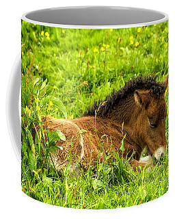 Coffee Mug featuring the photograph Nap In The Buttercups by Joan Davis