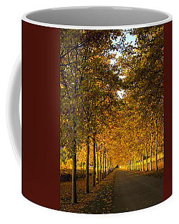 Napa Valley Fall Coffee Mug