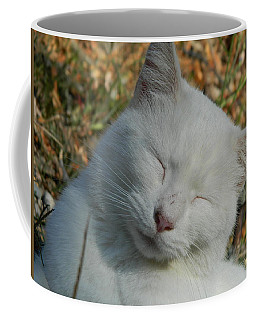 Coffee Mug featuring the photograph Napping Barn Cat by Kathy Barney