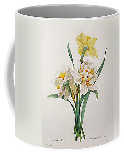 Narcissus Gouani Coffee Mug