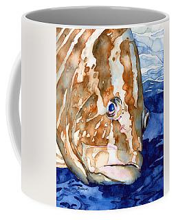 Nassau Grouper Portrait Coffee Mug