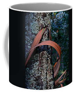 Coffee Mug featuring the photograph Natural Bands 1 by Evelyn Tambour