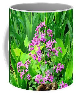 Nature Kingdom Coffee Mug