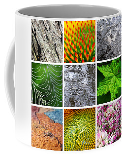 Patterns In Nature Coffee Mug