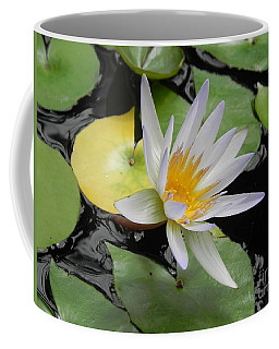 Coffee Mug featuring the photograph Natures Beauty by Chrisann Ellis