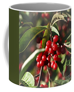 Natures Gift Of Red Berries Coffee Mug