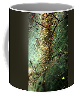 Natures Past Captured In A Web Coffee Mug