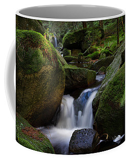 Coffee Mug featuring the photograph near the Brocken, Harz by Andreas Levi