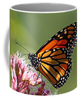 Nectaring Monarch Butterfly Coffee Mug
