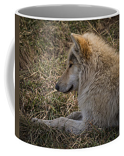Needed Break Coffee Mug