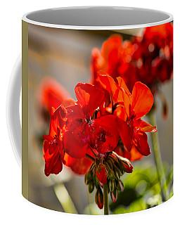 neighbour's flower DB Coffee Mug