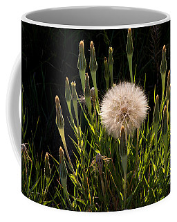Coffee Mug featuring the photograph Neon Dandelion by Angelique Olin