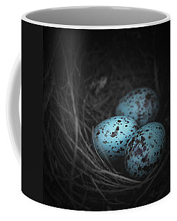 Nest Of 3  Coffee Mug by Trish Mistric