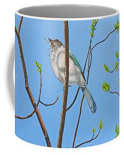 Nesting Scrub Jay Coffee Mug