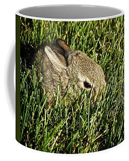 The Baby Cottontail Coffee Mug