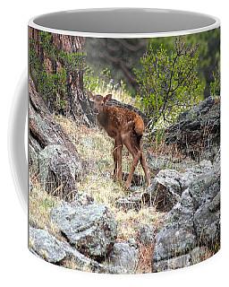 Newborn Elk Calf Coffee Mug