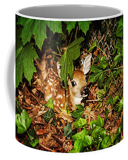 Coffee Mug featuring the photograph Newborn Fawn  by Eleanor Abramson