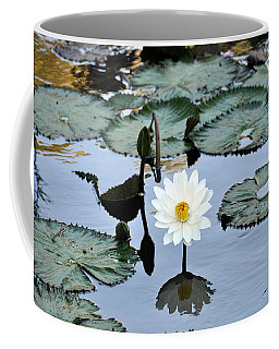 #night Blooming Water Lily Coffee Mug