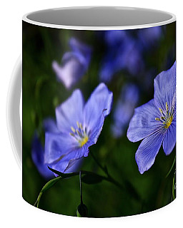 Night Garden Coffee Mug by Linda Bianic