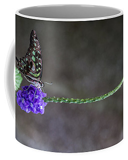 Butterfly - Tailed Jay II Coffee Mug