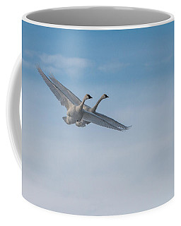 Trumpeter Swan Tandem Flight I Coffee Mug