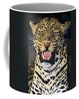 No Solicitors African Leopard Endangered Species Wildlife Rescue Coffee Mug