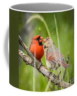 Northern Cardinal Male And Female Coffee Mug
