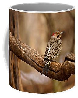 Northern Flicker II Coffee Mug