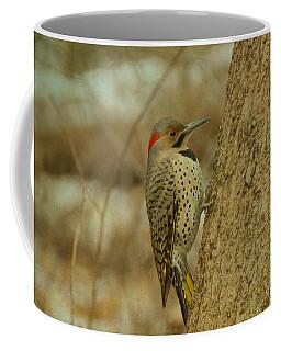 Northern Flicker On Tree Coffee Mug
