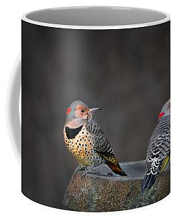 Northern Flickers Coffee Mug