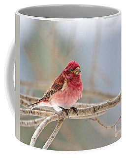 Northern Pretty Coffee Mug