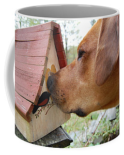 Coffee Mug featuring the photograph Nosey by Mim White