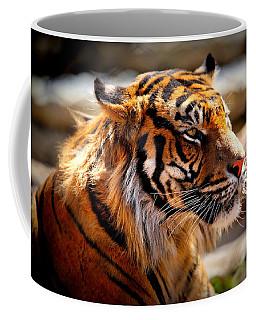 Not A Tigger Coffee Mug