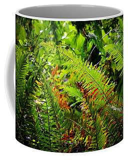 Coffee Mug featuring the photograph November Ferns by Adria Trail