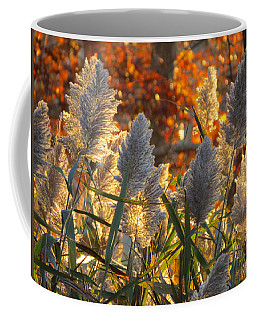 Coffee Mug featuring the photograph November Lights by Dianne Cowen