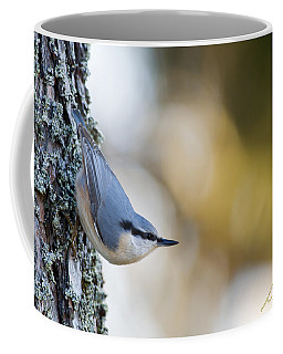 Nuthatch In The Classical Position Coffee Mug
