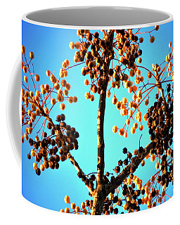 Coffee Mug featuring the photograph Nuts And Berries by Matt Harang