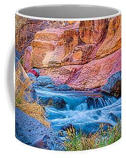 Oak Creek In The Spring Coffee Mug