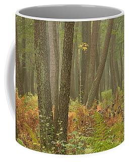 Oak Openings Fog Forest Coffee Mug