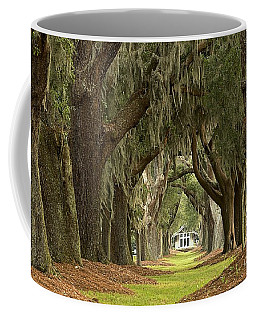 Oaks Of The Golden Isles Coffee Mug
