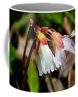 Oconee Bells Coffee Mug by Larry Bishop