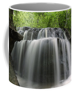 Odom Creek Waterfall Georgia Coffee Mug by Charles Beeler