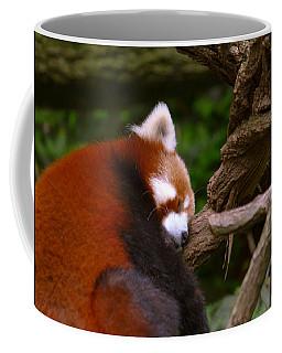 Oh So Sleepy Coffee Mug
