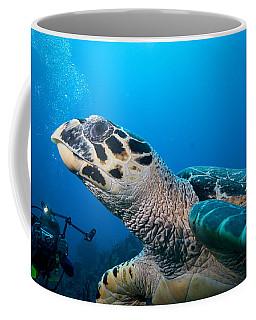 Oh That Paparazzi  Coffee Mug