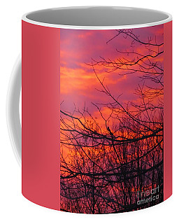 Oh What A Beautiful Morning Coffee Mug by Elizabeth Dow